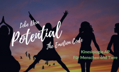 Lebe Dein Potential - The Emotion Code
