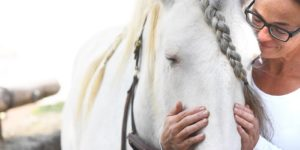 Die Arbeit am Pferdekopf verlangt viel Sorgfalt